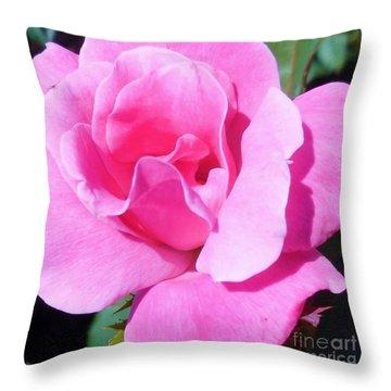 A Single Pink Rose Throw Pillow by Eloise Schneider