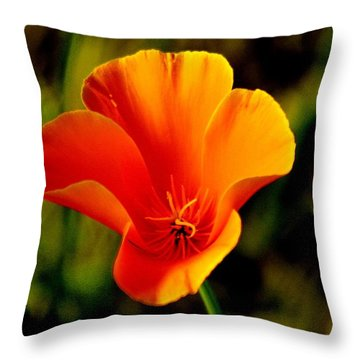A Single Poppy Throw Pillow