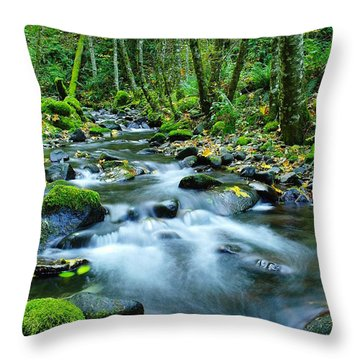 A Small Song In The Big Beauty Throw Pillow by Jeff Swan