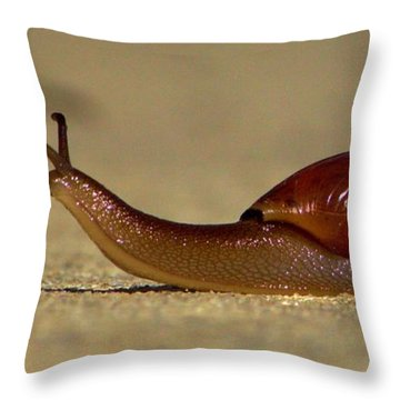 Throw Pillow featuring the photograph A Snails Pace by Tyson Kinnison