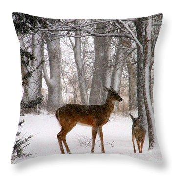 A Snowy Path Throw Pillow