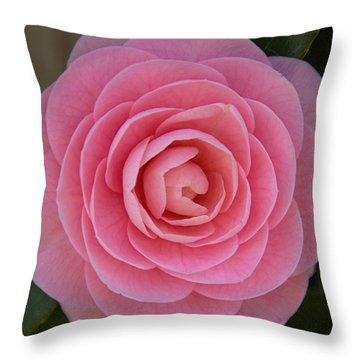 A Soft Blush Throw Pillow