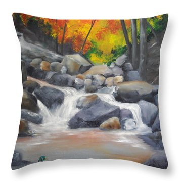 A Special Place   Throw Pillow by Ellen Canfield