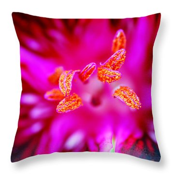 A Splash Of Colour Throw Pillow by Wendy Wilton