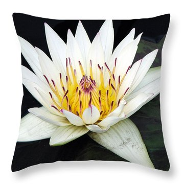 Botanical Beauty Throw Pillow