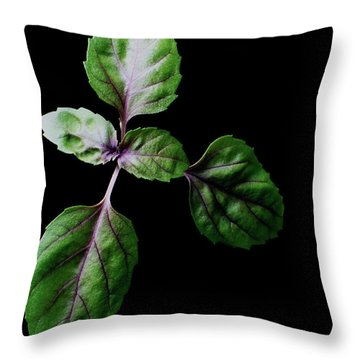 A Sprig Of Basil Throw Pillow