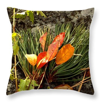 A Sprig Of Color Throw Pillow