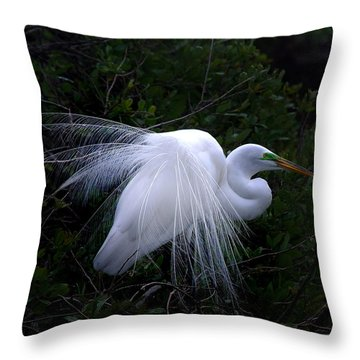 A Stand Out Throw Pillow by Skip Willits