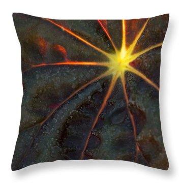 A Star Throw Pillow by Sabrina L Ryan