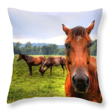 Throw Pillow featuring the photograph A Starring Horse 2 by Jonny D