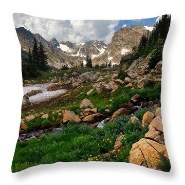 Throw Pillow featuring the photograph A Stream Runs Through It by Ronda Kimbrow