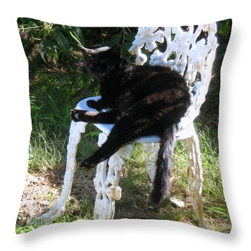 A Study In Contrast Throw Pillow