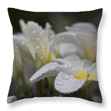 A Subtle Truth Throw Pillow by Sharon Mau