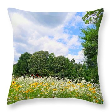 Throw Pillow featuring the photograph A Summer Meadow by Jim Whalen