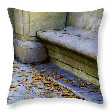 A Summer Wasting Throw Pillow by Raymond Kunst