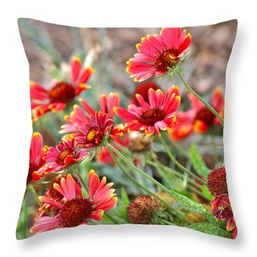 Throw Pillow featuring the photograph A Summers Breeze by Eve Spring