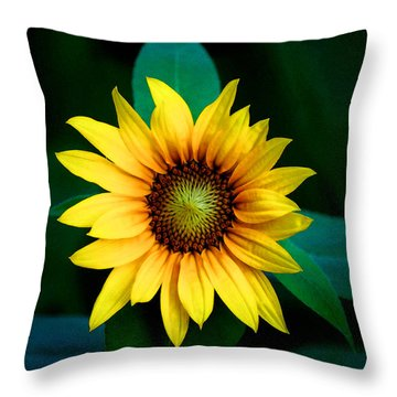 A Sunflower Named Stella Throw Pillow by Gwyn Newcombe