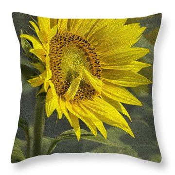 Throw Pillow featuring the photograph A Sunflower's Prayer by Betty Denise