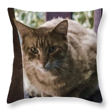 Throw Pillow featuring the digital art A Tabby Named Happy by Photographic Art by Russel Ray Photos