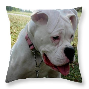A Tear Shed Throw Pillow