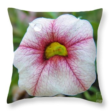 A Teardrop For Today Throw Pillow