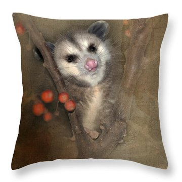 A Thief In The Night Throw Pillow by Betty LaRue