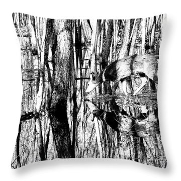 Throw Pillow featuring the photograph A Thirsty Pause  by Lorna Rogers Photography