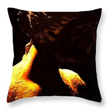 A Thousand Years Throw Pillow