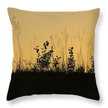 A Time Of Peace Throw Pillow by Jane Eleanor Nicholas