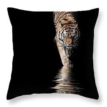 A Time To Reflect Throw Pillow