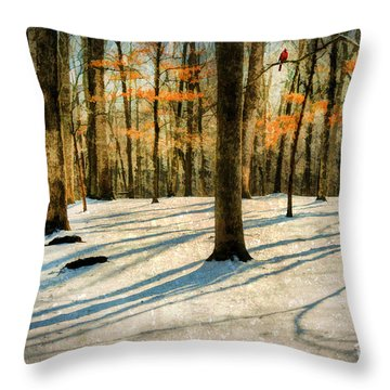 A Touch Of Autumn Throw Pillow by Darren Fisher