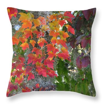 A Touch Of Autumn Throw Pillow by Mariarosa Rockefeller