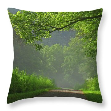 A Touch Of Green II Throw Pillow by Douglas Stucky