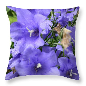 A Touch Of Lavender Throw Pillow