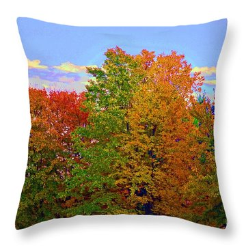 A Touch Of Neon Throw Pillow by Judy Wolinsky