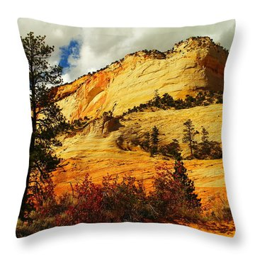 A Tree And Orange Hill Throw Pillow by Jeff Swan