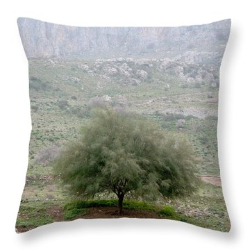 A Tree In Israel Throw Pillow