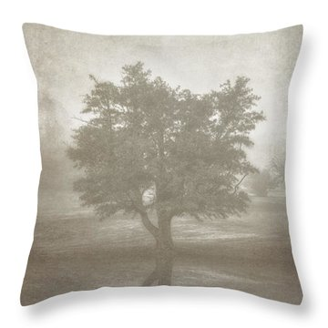 A Tree In The Fog 3 Throw Pillow