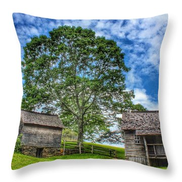 A Trip Back In Time Throw Pillow
