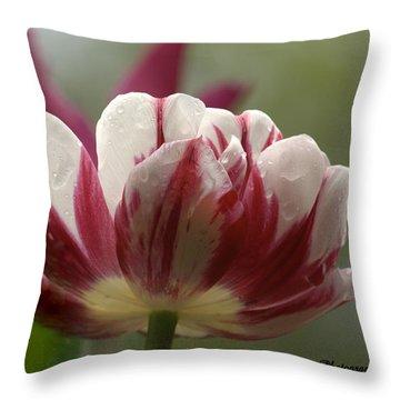 A Tulip After The Rain Throw Pillow