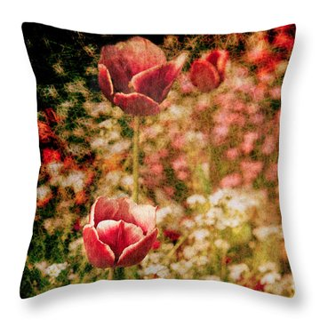 A Tulip's Daydream Throw Pillow by Loriental Photography
