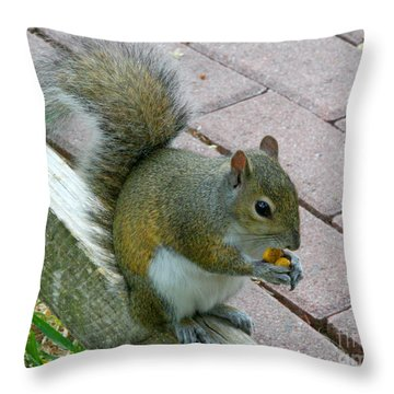 A Two-nut Lunch Throw Pillow by Mariarosa Rockefeller