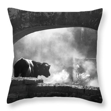 A Very Mooooody Time Throw Pillow