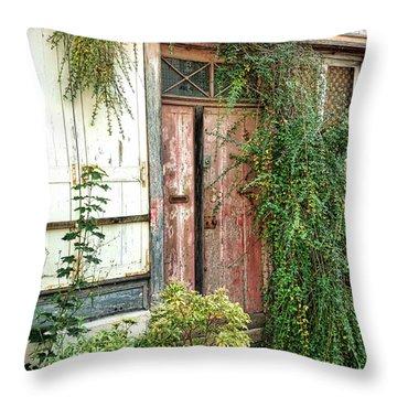 A Very Old Door Throw Pillow