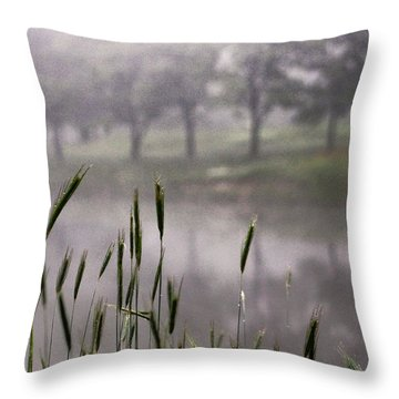 A View In The Mist Throw Pillow
