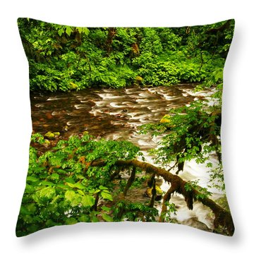 A View Of Eagle Creek Throw Pillow by Jeff Swan