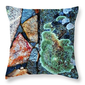 A  View Of Nature Throw Pillow