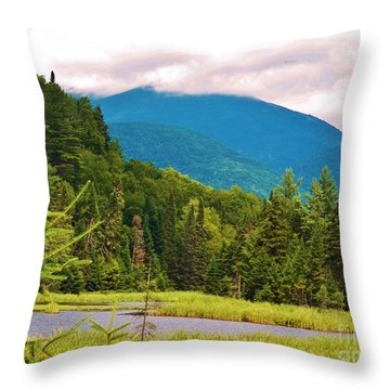 A View Of Whiteface Mountain Throw Pillow