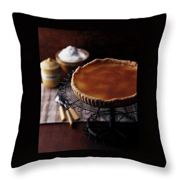 A Vinegar Pie On A Wire Stand Throw Pillow