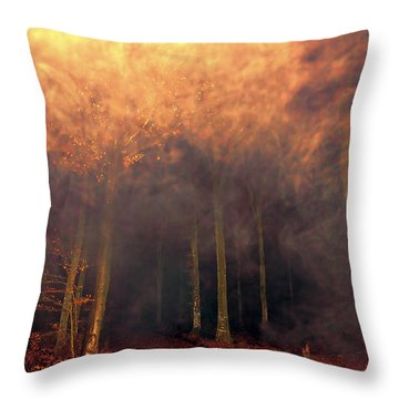 A Waking Dream. Throw Pillow